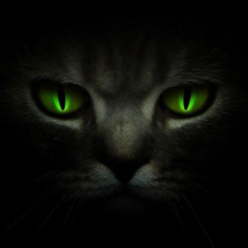 Psylent Partner's avatar