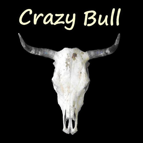 Crazy Bull Band's avatar