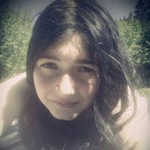 Vanni Hartung's avatar