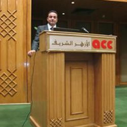 Ahmed Abuelmakarem's avatar