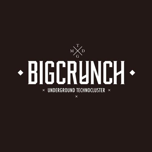 BIG CRUNCH RECORD's avatar