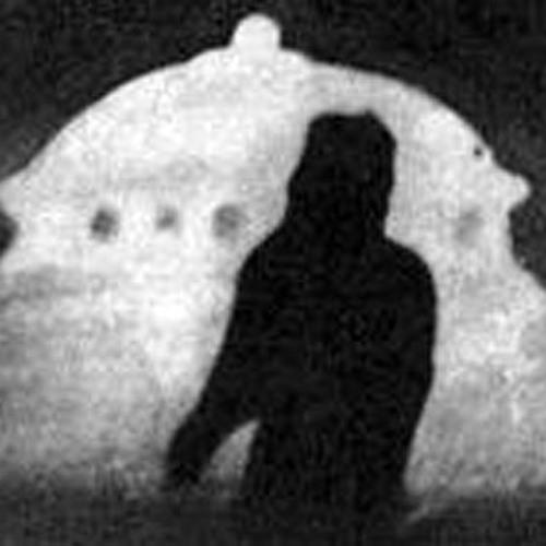 Palsekam's avatar