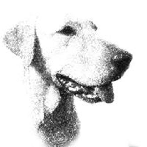 Schneyder Mendoza's avatar