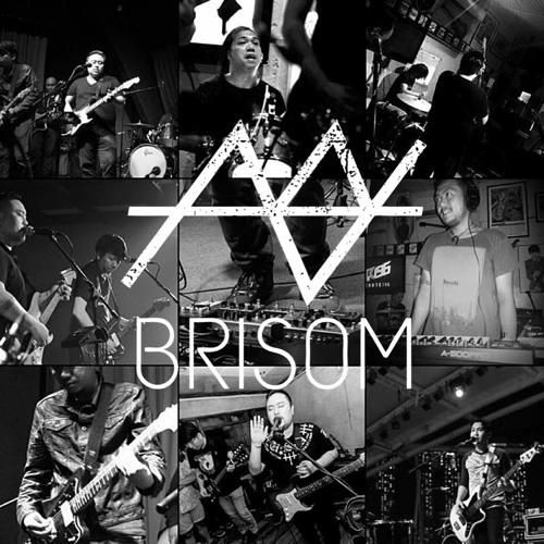 Brisom's avatar
