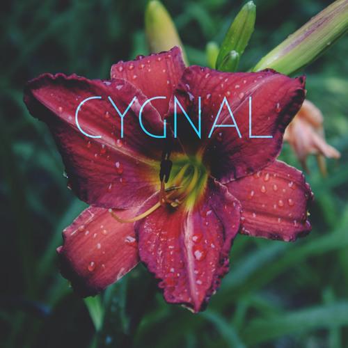 Cygnal's avatar