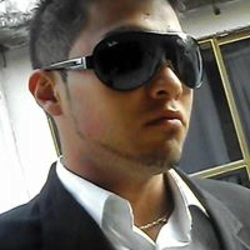 Biancucci Tigre Vengala's avatar
