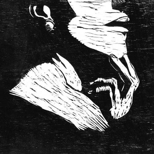 passotorto's avatar