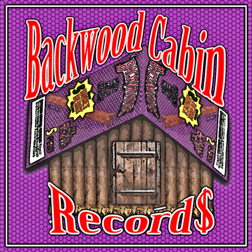 BACKWOOD CABIN RECORD$'s avatar