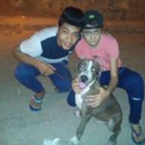 AmIr Ebn WaGdy's avatar