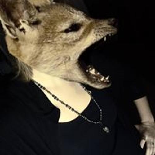 DamnFox's avatar
