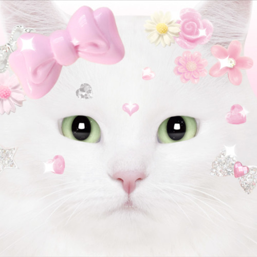 kattorii's avatar