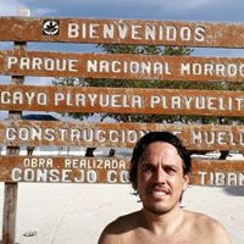 Vicente Emilio Carvajal's avatar