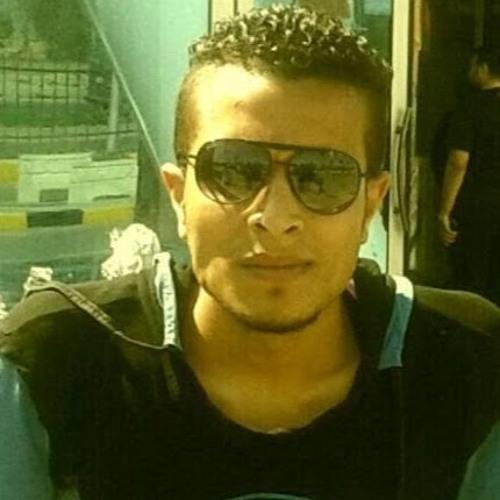 Mahmoud Shetos's avatar