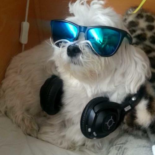 MrBimbo's avatar