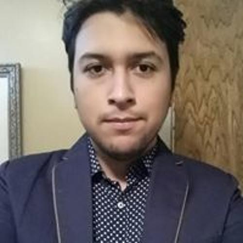 Lucas Cisneros's avatar