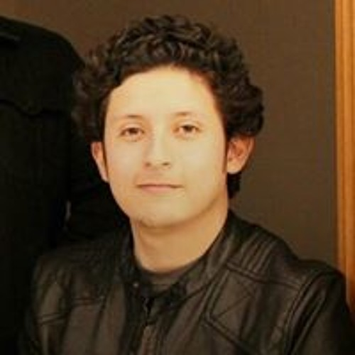 Octavio Pérez Borjón's avatar