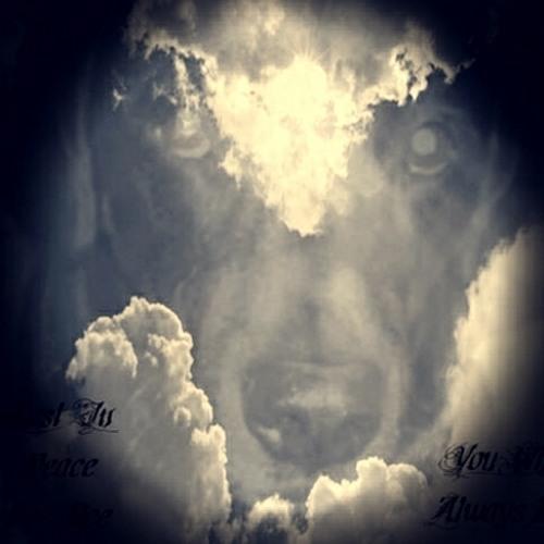 Charlie Robinson 12's avatar