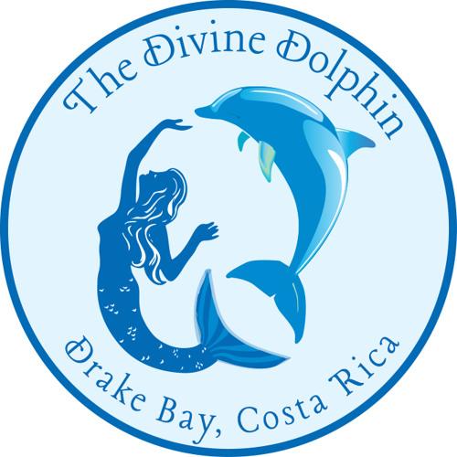 Divine Dolphin's avatar