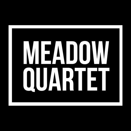 Meadow Quartet's avatar