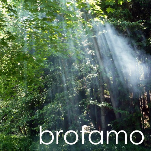Brofamo's avatar