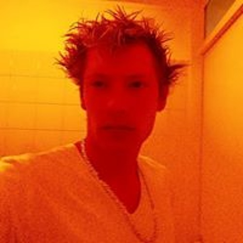 Fabian van Put's avatar
