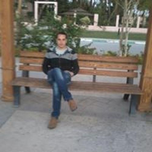 Mohamed Elsharkawy's avatar