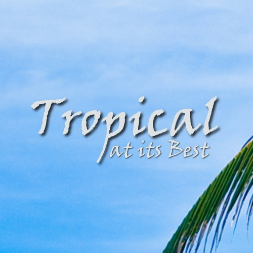 Tropical at its Best's avatar