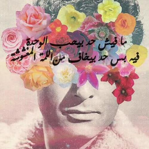 Mohammed Abd El Aty's avatar