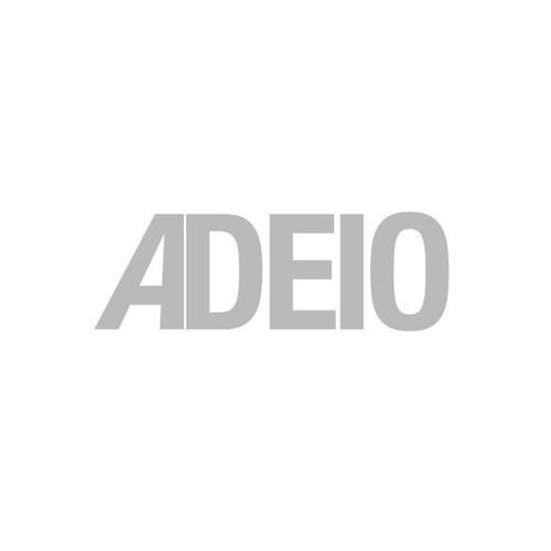 Adeio's avatar