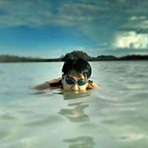 Raymund Grabato Cantara's avatar