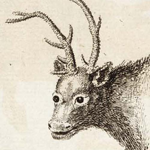Jack Anger's avatar