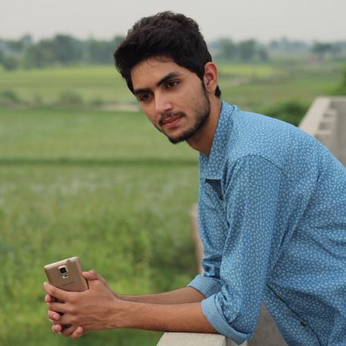 Muhammad Shahum's avatar