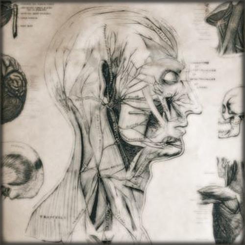 unuk's avatar