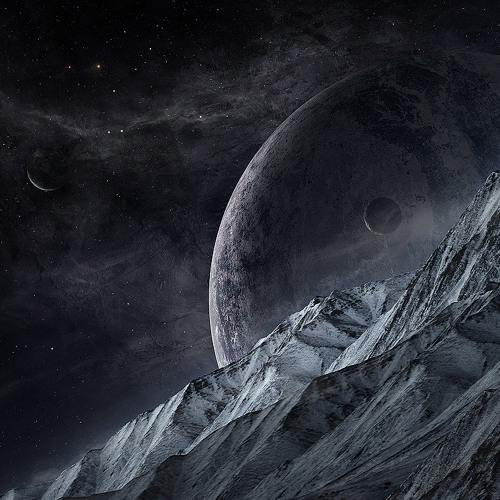 Black Dianthus's avatar