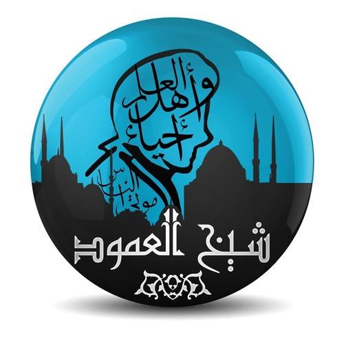 Sheikh Alamoud's avatar