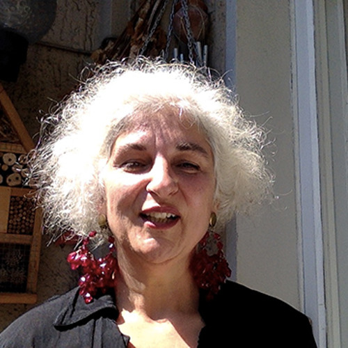 Pan Dora's avatar