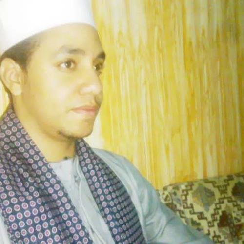 Abdelrheem Rady's avatar