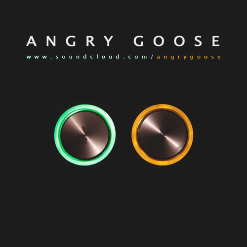 ANGRY GOOSE's avatar
