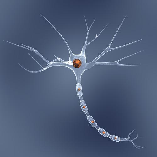 Nerve LS<789ThZ's avatar