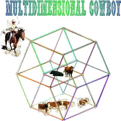 Multidimensional Cowboy's avatar
