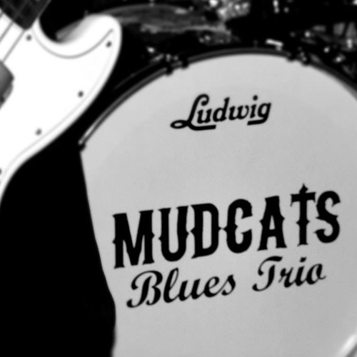 Mudcats Blues Trio's avatar