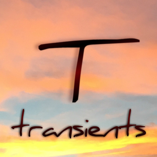 transients's avatar