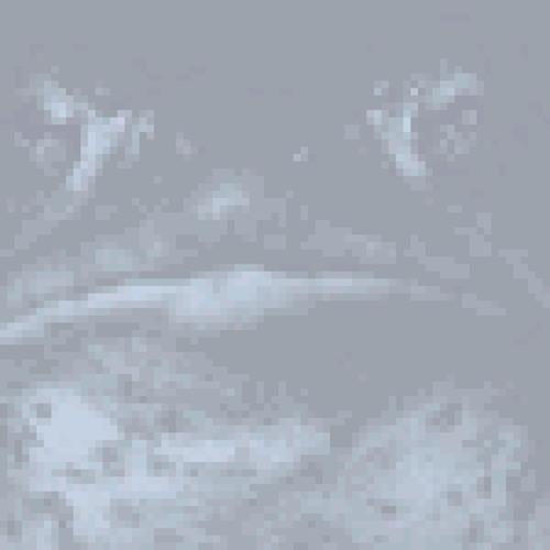 Battletoad*'s avatar