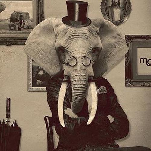 Elefanto's avatar