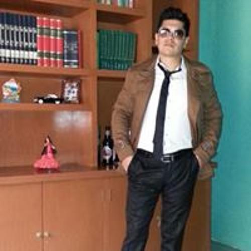 Sebastian Meneses's avatar