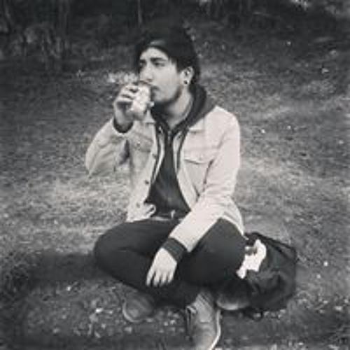 Claudio Moth's avatar