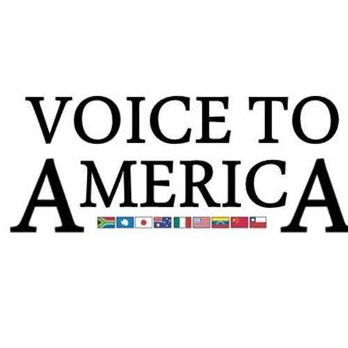 Voice to America's avatar