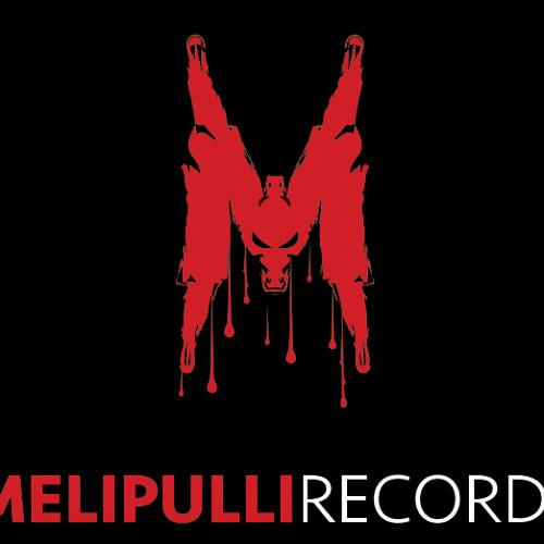 Melipulli Records's avatar