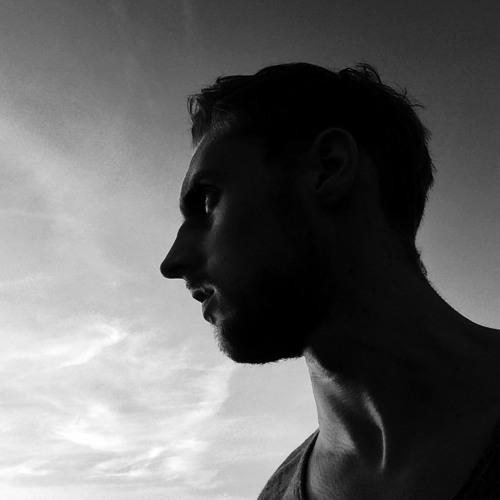 Robin Werner's avatar