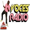 Duane Harden - Voces Radio 1716 2017-04-21 Artwork